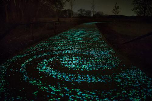 Con đường đầy ánh sao đêm 2