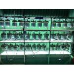 Test đèn nhà xưởng 40w POTECH