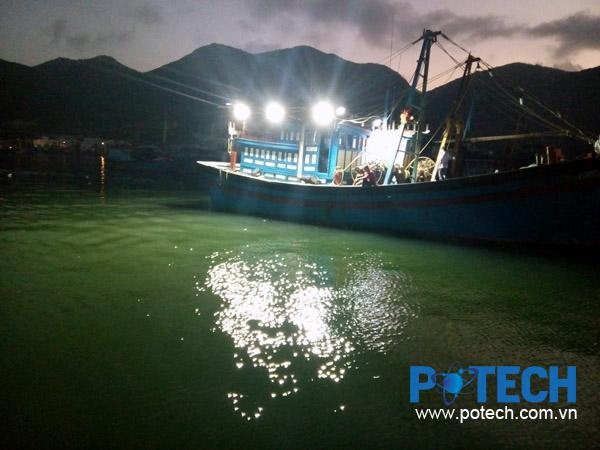 Có nên sử dụng đèn LED để đánh bắt cá?