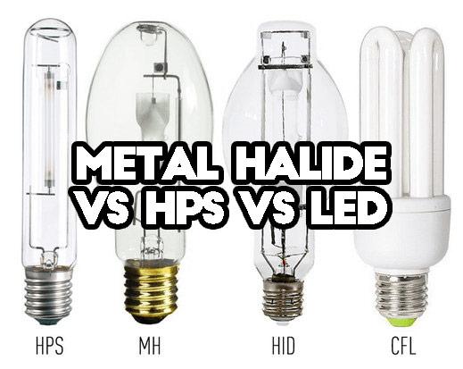 Đèn Metal Halide, đèn Sodium và đèn LED có gì khác nhau không? Tôi có nên thay thế MH & HPS?