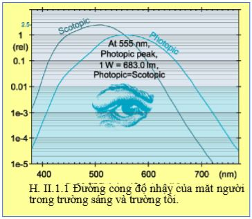 Đường cong độ nhậy của mắt người trong trường sáng và trường tối