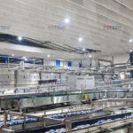 Đèn LED nhà máy bia Heineken Đà Nẵng (1)