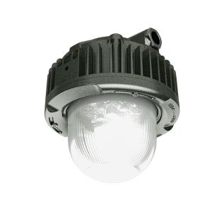 Đèn LED chống cháy nổ 40W